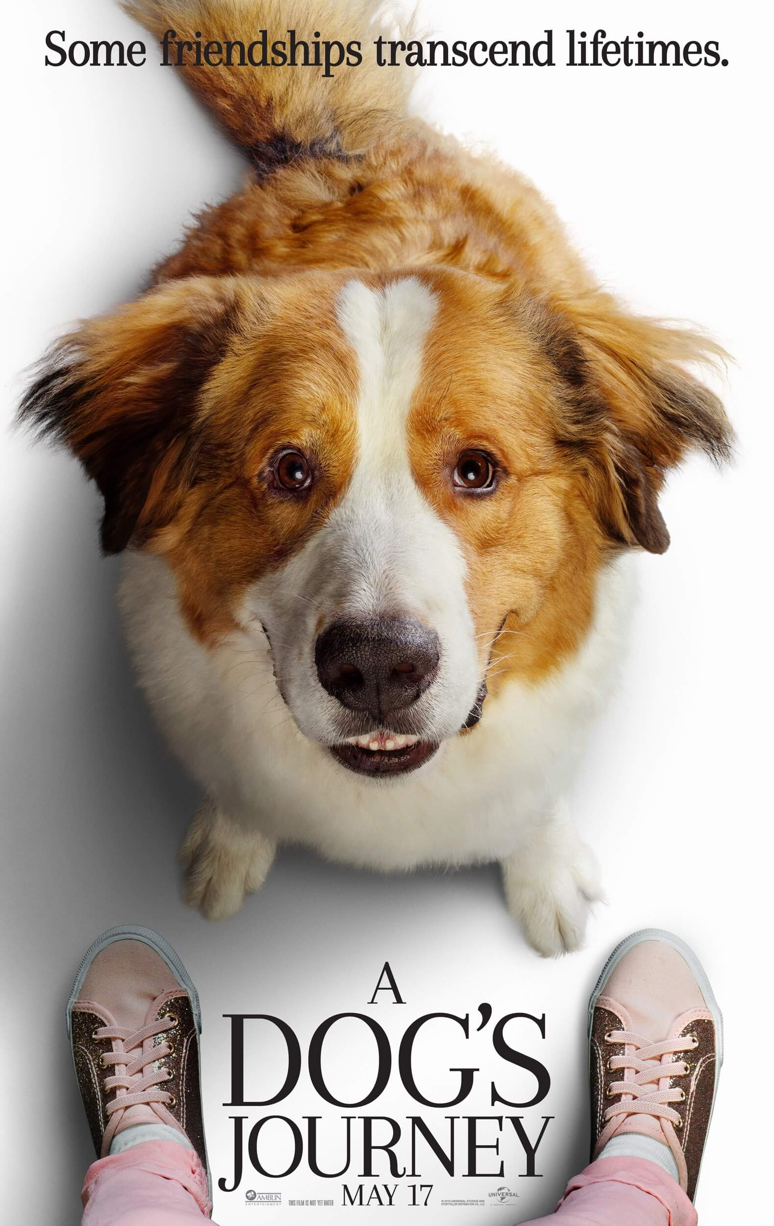 A Dog's Journey - Poster 1