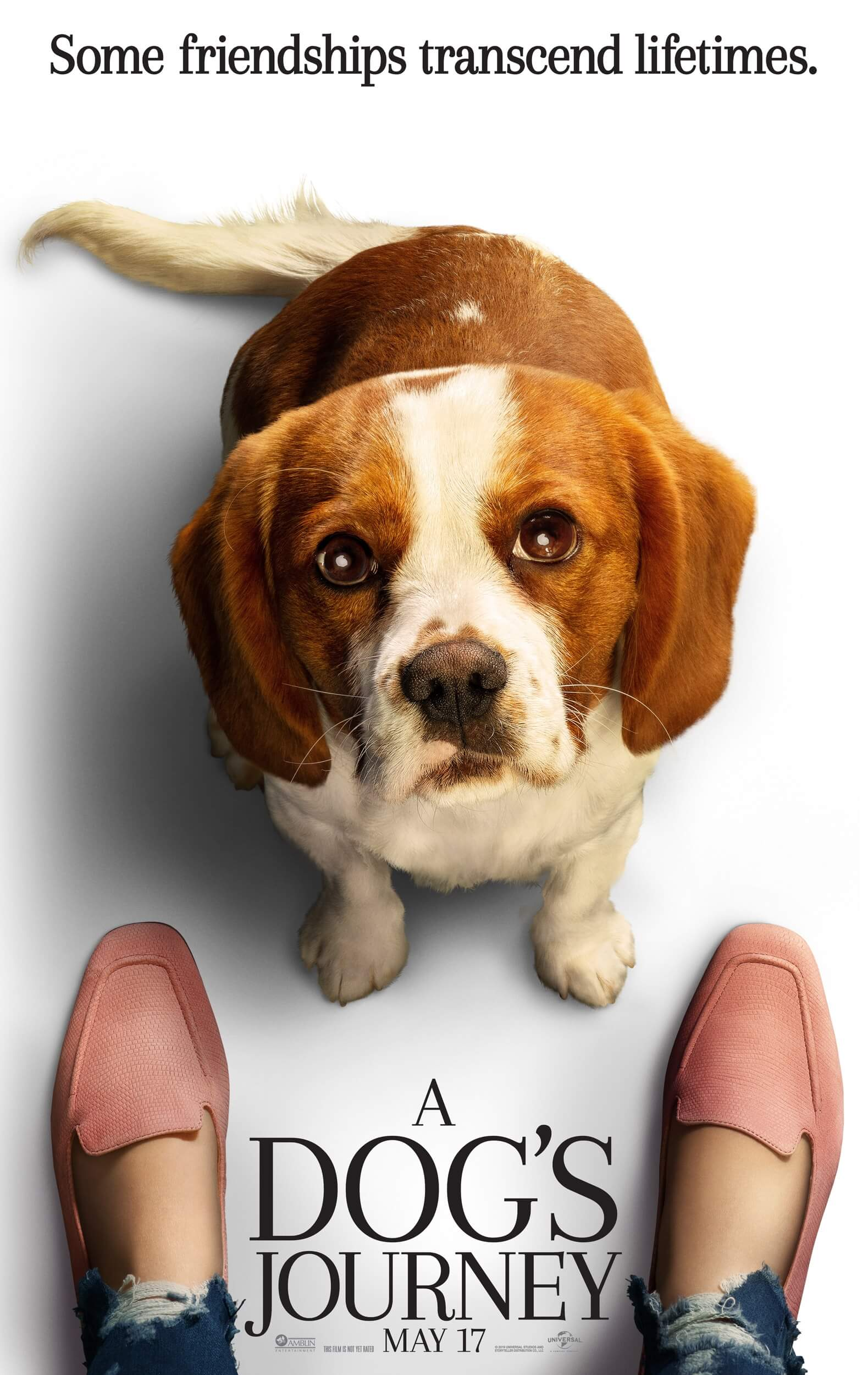 A Dog's Journey - Poster 3