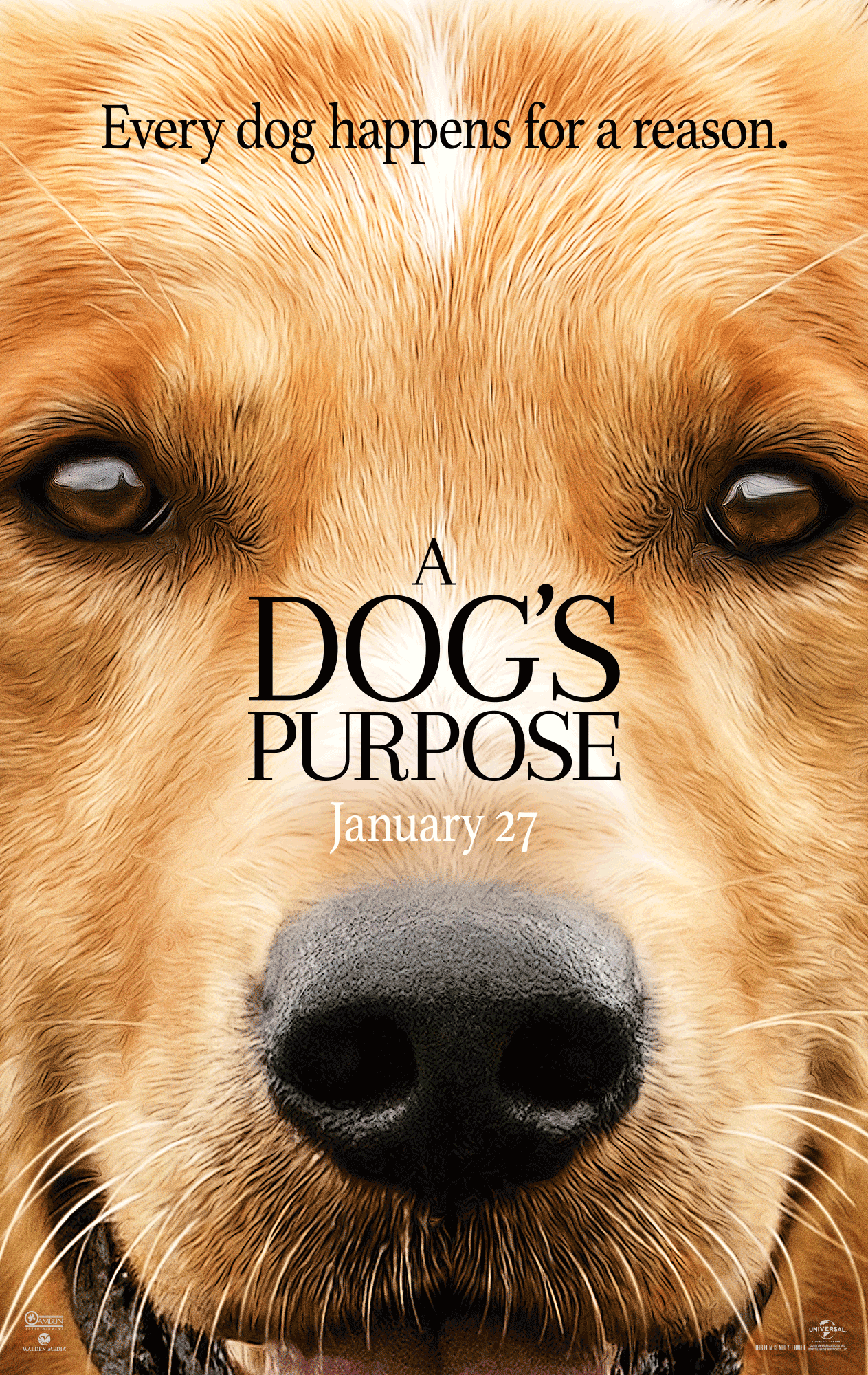 A Dog S Purpose Download Movie Free