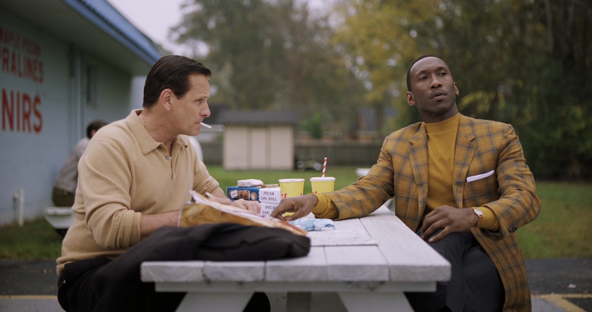 Green Book - Photo 2