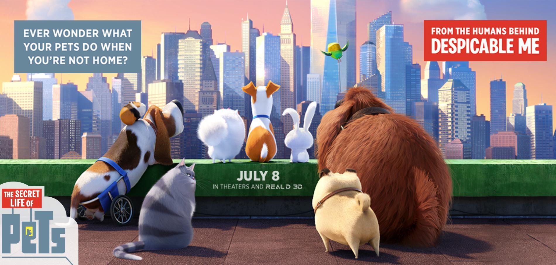 The Secret Life Of Pets 2016 Movie Review Epsilon Reviews
